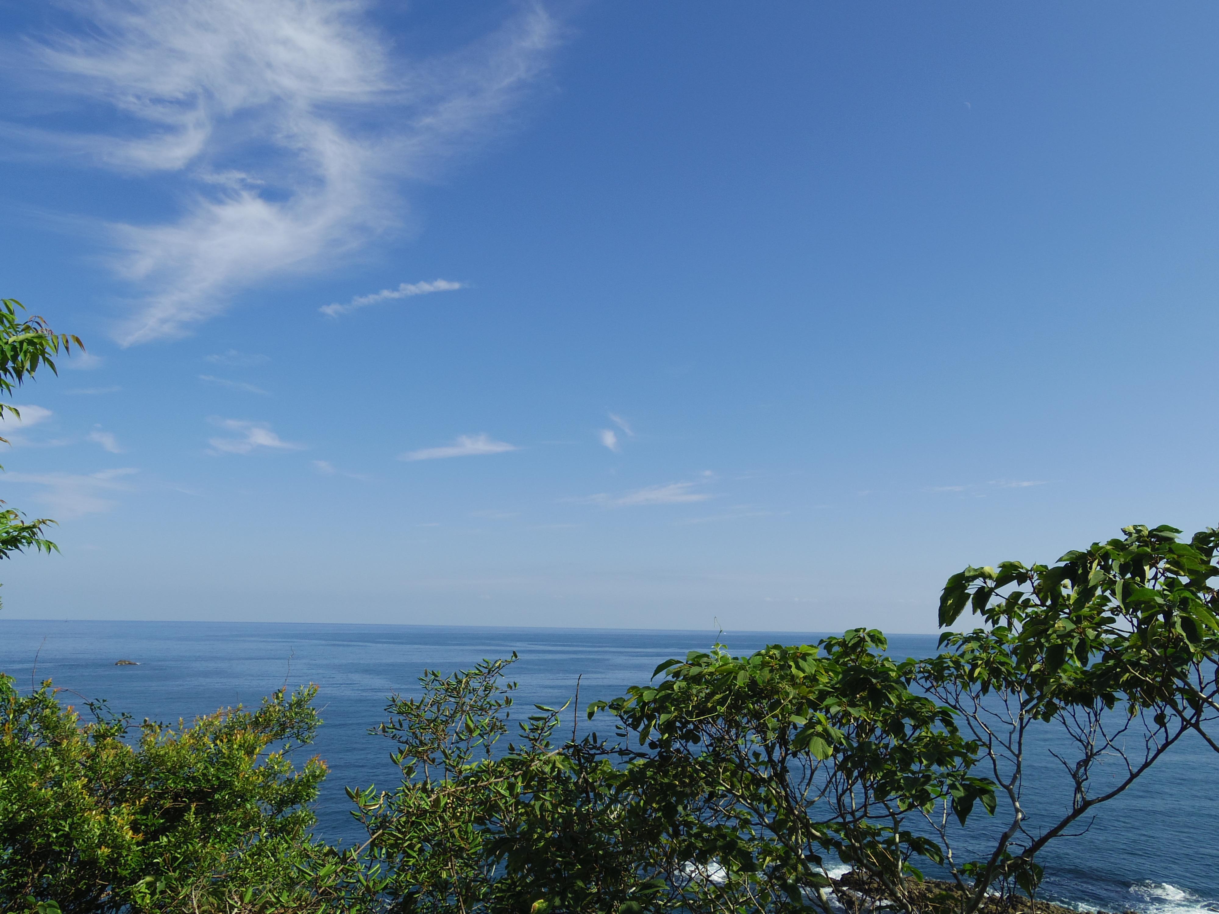 双名島 灯台 景色 中土佐町