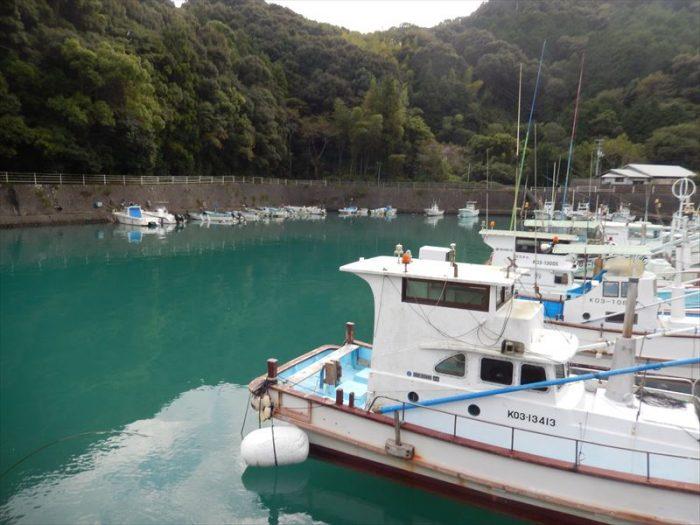 やいか 築港 漁船