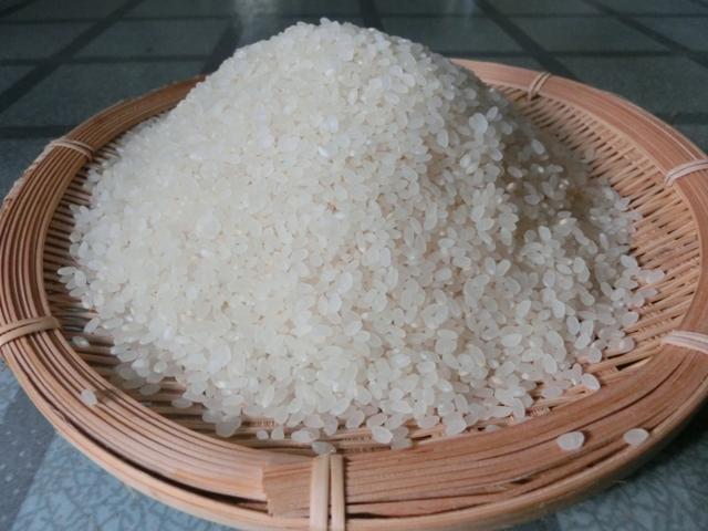 四万十の清粒「大野見米」
